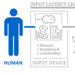 Input Latency Chain: Human Element